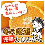 日本最北端の極上の甘いほたてと季節の野菜のプレミアムグラタンキッシュは今だけ送料無料!