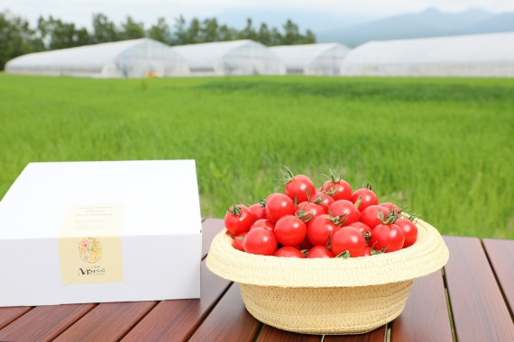 <47CLUB> 南麓郷の赤い果実 1.25KG ミナミ赤のみ簡易BOX画像