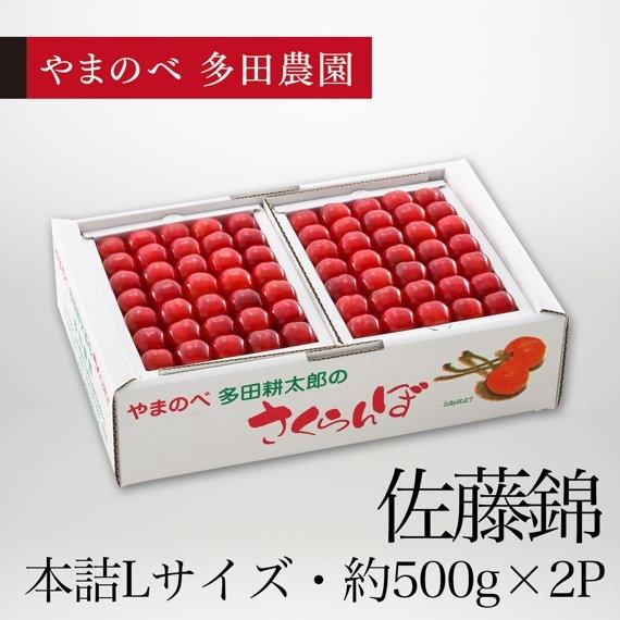 <47CLUB> 佐藤錦(Lサイズ 2段本詰)約500g×2パック【贈答用】画像