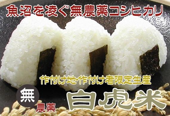 <47CLUB> 平成29年産 特別栽培米 無農薬白虎米1kg<放射能未検出>画像