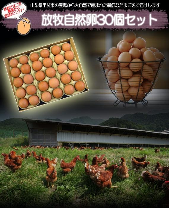 <47CLUB> 【TVで紹介されました!】黒富士農場 自然放牧卵30個セット【送料込み】【お中元2018】 【米・野菜・惣菜】画像
