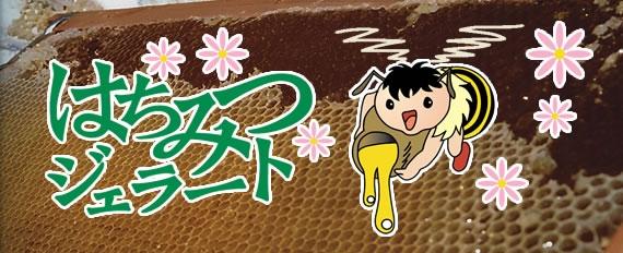 <47CLUB> はちみつジェラート(10個入)【ギフト】【アイスクリーム・乳製品】画像