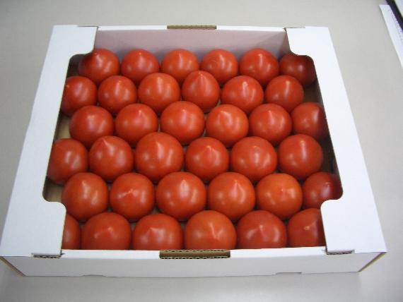 <47CLUB> [真紅の宝石] 越のルビートマト 2Kg バラケース画像