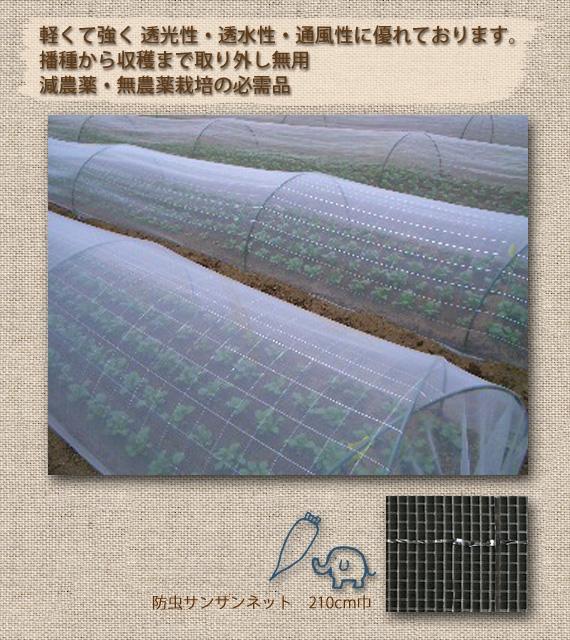 <47CLUB> 播種から収穫まで取り外し無用! 虫よけ  防虫サンサンネット  210cm×10m画像