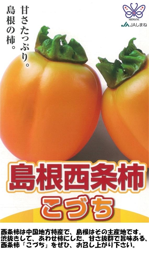 【送料込】 島根県産西条柿「...