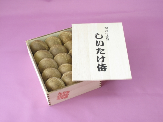 <47CLUB> しいたけ侍 木箱小【お中元・お歳暮・贈答用に人気の商品です!】画像