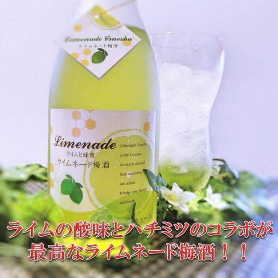<47CLUB> リキュール『ライムネード梅酒』 720ml 8度 ライム果汁の爽やかな酸味とはちみつとのコラボが絶妙な梅酒です。【お中元2018】【ドリンク】画像