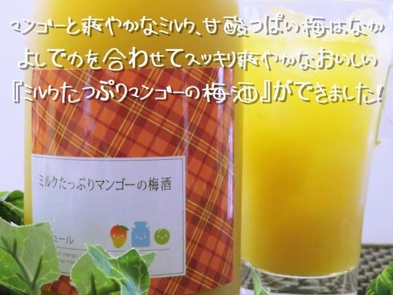 <47CLUB> リキュール 『ミルクたっぷりマンゴーの梅酒』 720ml 8度 マンゴーの甘みとミルクが見事にコラボしたスッキリ爽やかでおいしい梅酒です。 【お中元2018】【ドリンク】画像