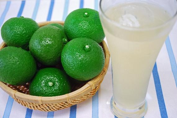 <47CLUB> 大分県別府市のみで栽培されたかぼす果汁使用。使いきり100mlサイズでいつでも新鮮!いつでも美味しい!果汁100%『かぼす搾り』画像