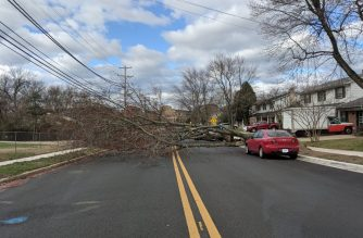 High winds uprooted trees in Oxen Hill, Maryland. Photo by Lowell Nucum, Eagle News Service.