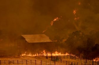 Flames from the County Fire move through a property in Guinda, California, on July 1, 2018. Californian authorities have issued red flag weather warnings and mandatory evacuation orders after a series of wildfires fanned by high winds and hot temperatures ripped through thousands of acres. The latest blaze, the County Fire sparked in Yolo County on June 30, had by July 1 afternoon spread across 22,000 acres (9,000 hectares) with zero percent containment, according to Cal Fire. / AFP PHOTO / JOSH EDELSON