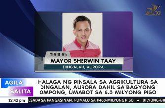 Halaga ng pinsala sa agrikultura sa Dingalan, Aurora dahil sa bagyong Ompong, umabot sa 6.3 milyong piso
