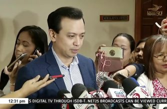 Trillanes wants Dennis Uy invited to Senate panel telco hearing