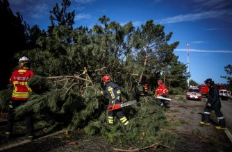 Firefighters remove broken trees from the road in Figueira da Foz on October 14, 2018 after the post-tropical storm Leslie reached Portugal. - Storms packing nearly 180 kilometre-per-hour winds hit Portugal leaving hundreds of thousands of people without power before carrying heavy rain on into Spain, authorities said. (Photo by CARLOS COSTA / AFP)