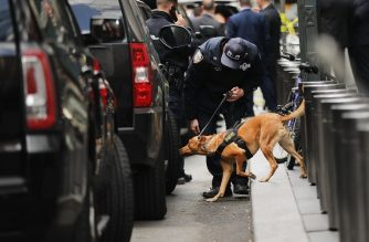 (FILES) In this file photo taken on October 24, 2018 a police bomb sniffing dog is deployed outside of the Time Warner Center after an explosive device was found in New York City. - Dogs can be trained to sniff out certain cancers, people at risk of a diabetic coma and now, children with malaria just by smelling their socks, researchers said October 29, 2018. According to the findings presented at the American Society of Tropical Medicine and Hygiene annual meeting in New Orleans, dogs were trained to sniff out malaria parasites in African children who tested positive for the mosquito-borne disease but did not have a fever or other outward symptoms. (Photo by SPENCER PLATT / GETTY IMAGES NORTH AMERICA / AFP)