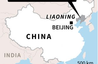 Five dead, 18 hurt as car rams into children in China
