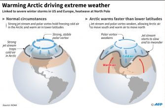 LOOK: The effects of global warming in the Arctic