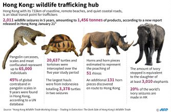 Pictures showing wildlife that being smuggled in Hong Kong.