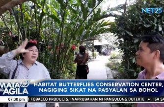 Habitat Butterflies Conservation Center, nagiging sikat na pasyalan sa Bohol