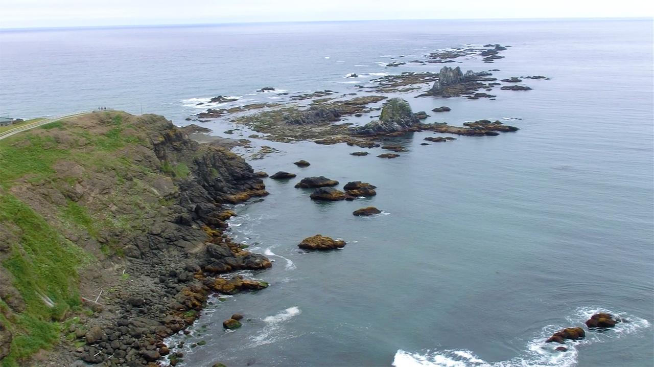 秒速25mの強風が吹く襟裳岬で 海の幸を満喫 札幌