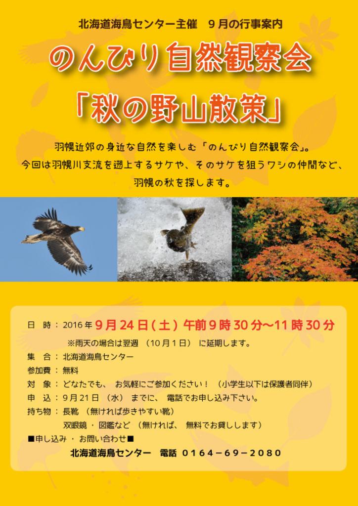 身近な自然を楽しむ のんびり自然観察会 秋の野山散策 羽幌町 (9/24) 札幌