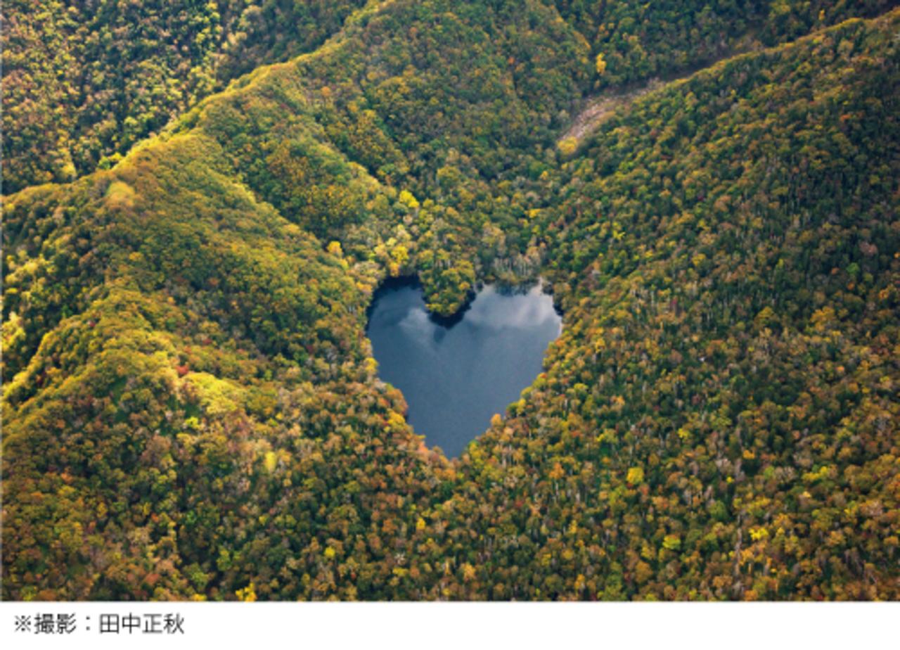 紅葉に囲まれ輝くハート形の湖 豊似湖 ヘリコプター遊覧飛行 えりも町 札幌