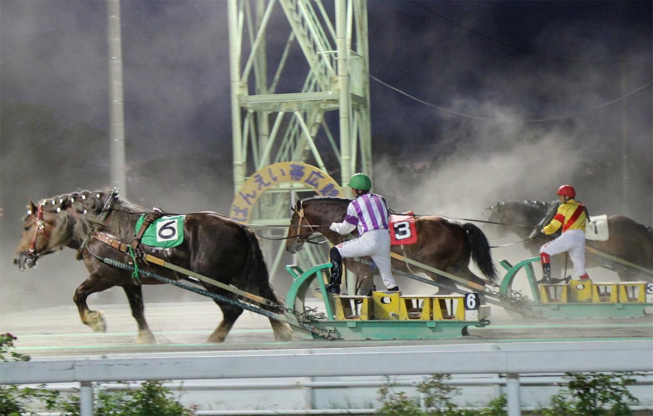 土煙を上げ鉄ソリをひく大迫力のレース 帯広市 ばんえい競馬 札幌
