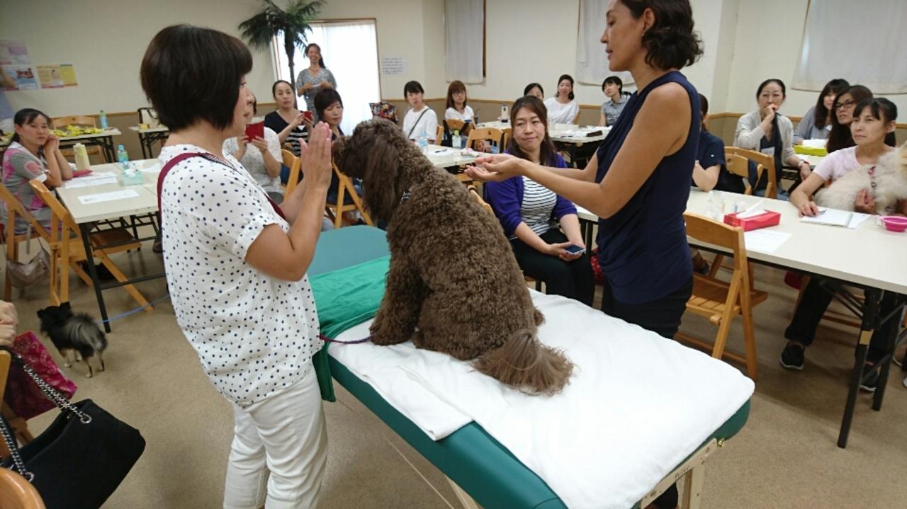 わんこの健康管理 JASペットアロマセミナー in札幌 中央区 (6/17) 札幌