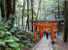 Fushimi-inari-tapınağı