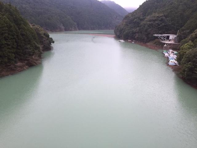 gougawadam2