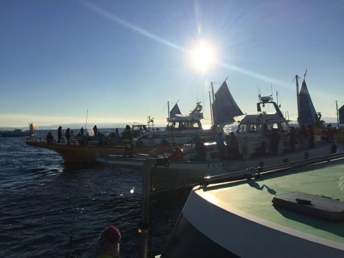start_fishing