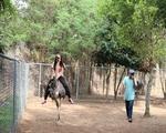ダイナム公園