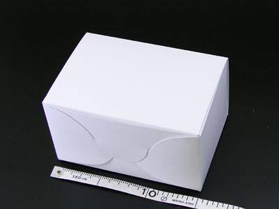 ホワイトショートケース No.5