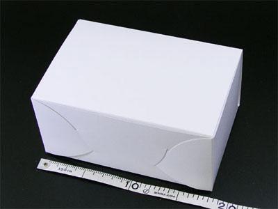 ホワイトショートケース No.6