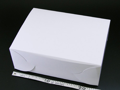ホワイトショートケース No.8