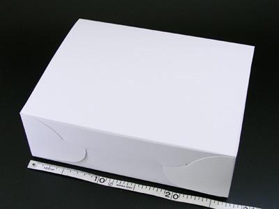 ホワイトショートケース No.9