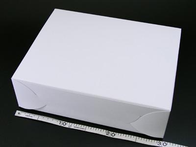 ホワイトショートケース No.10