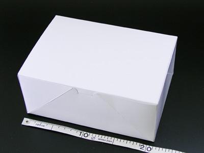 洋生カートン 3号