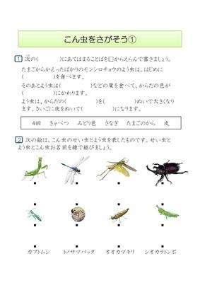 ... 学習プリント昆虫を探そう① : 小学校 国語 プリント : プリント
