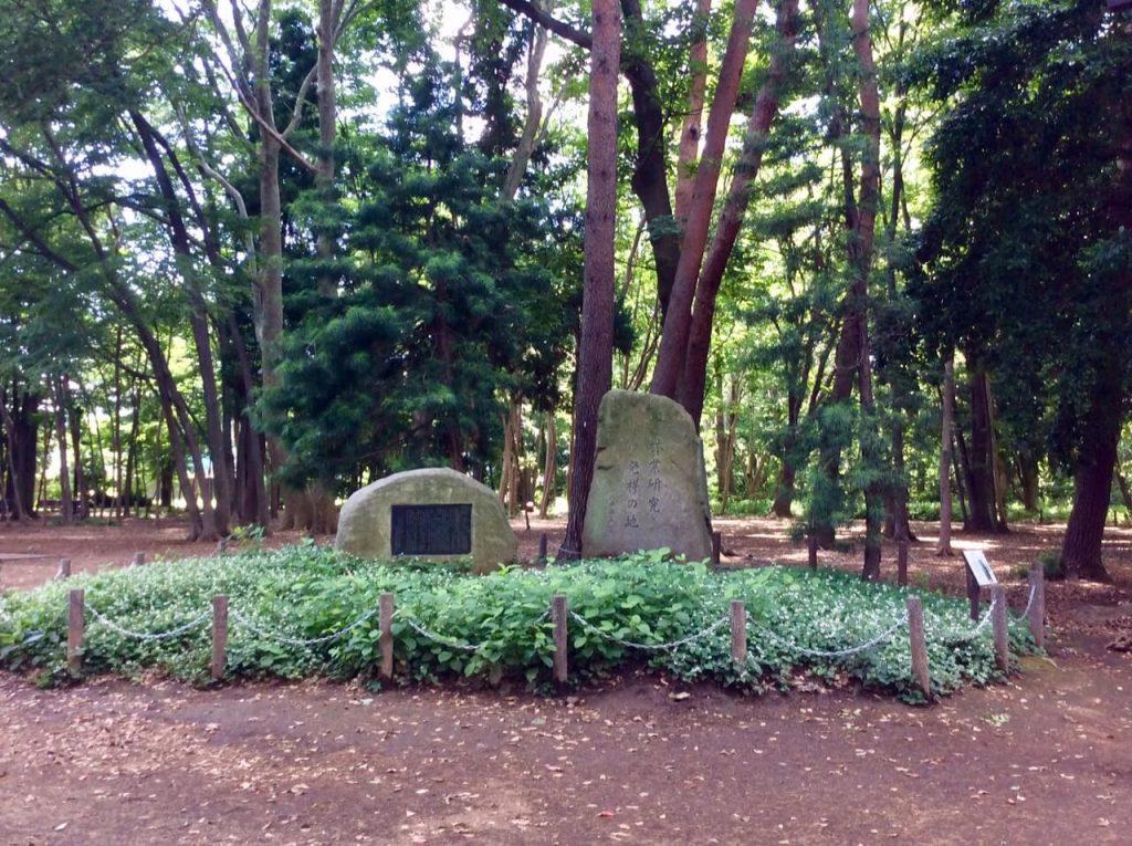 林試の森石碑