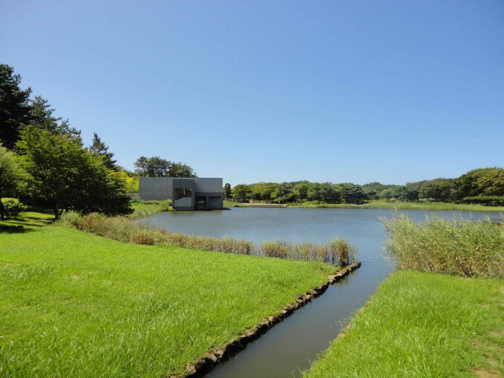 池からの建築物2