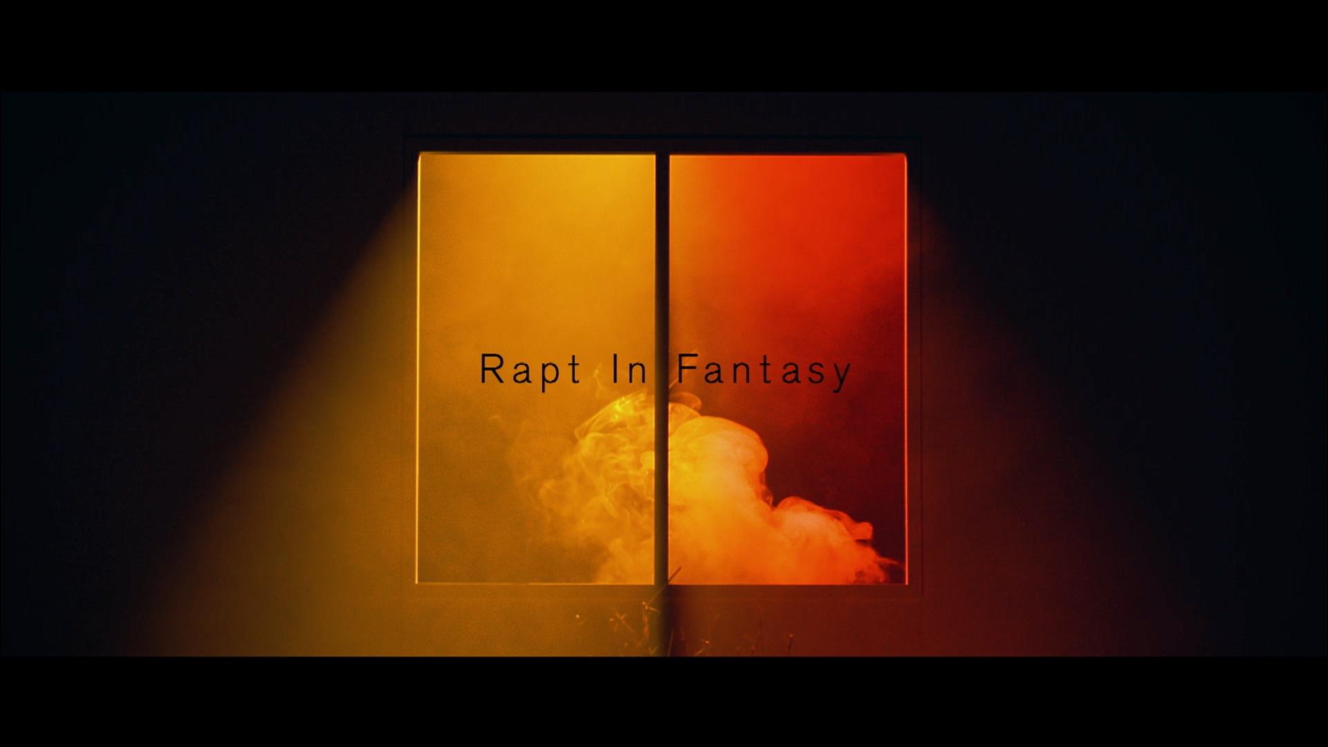 Rapt In Fantasy
