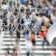 behavioral_observation_matsunami
