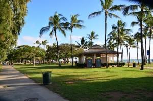 hawaiimatome1