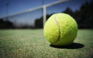 tennis-ball-984611_640