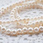 真珠養殖の発祥の地は三浦市だった!
