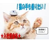 株式会社スペックス 東京サテライトオフィスのイメージ