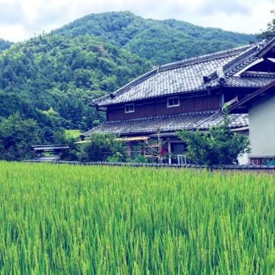 Rural Life in Japan
