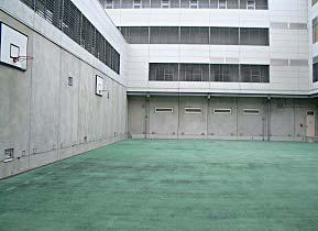 屋外運動所