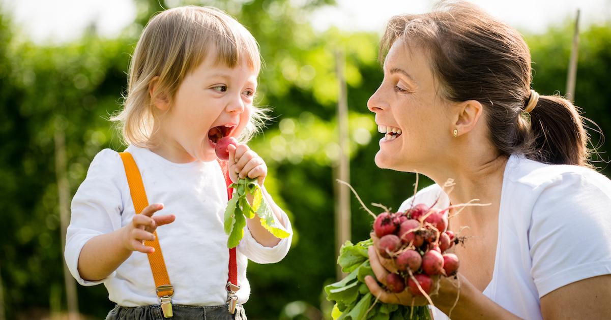 """保育園・幼稚園の「食育活動」がアツい! """"体験"""" を通して食を学ぶ。"""